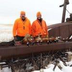 pheasant-hunting42