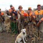 pheasant-hunting49