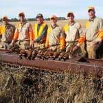 pheasant-hunting48
