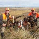 pheasant-hunting51
