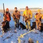 pheasant-hunting29