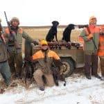 pheasant-hunting39